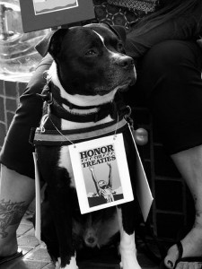 No DAPL rally and march in Los Angeles - dog protester